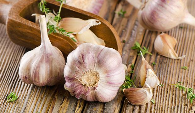 Garlic Extra